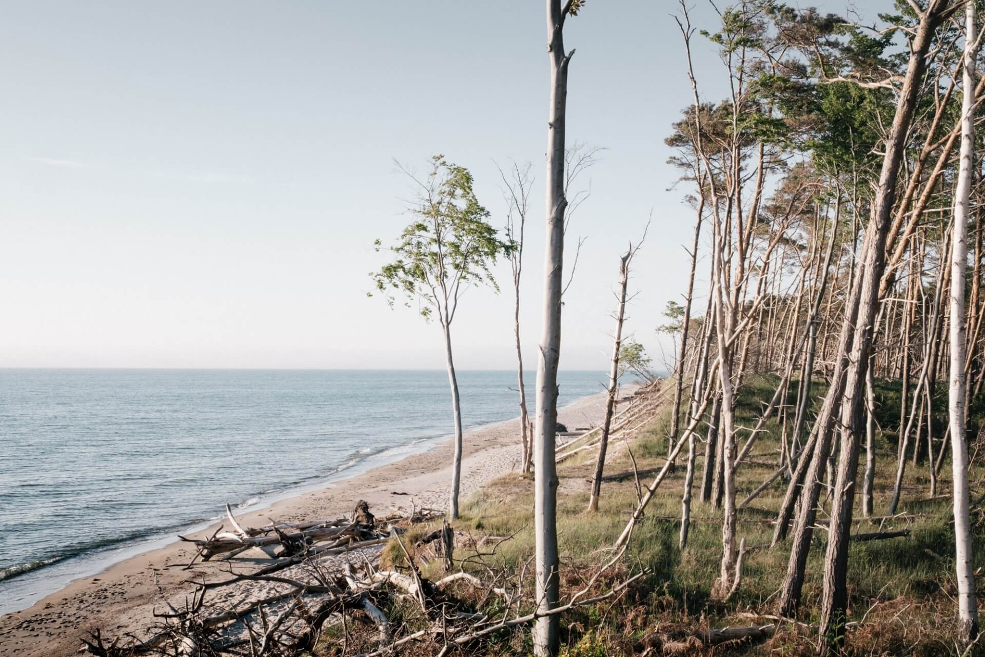 Junic Studio Baltic Sea – A Portrait